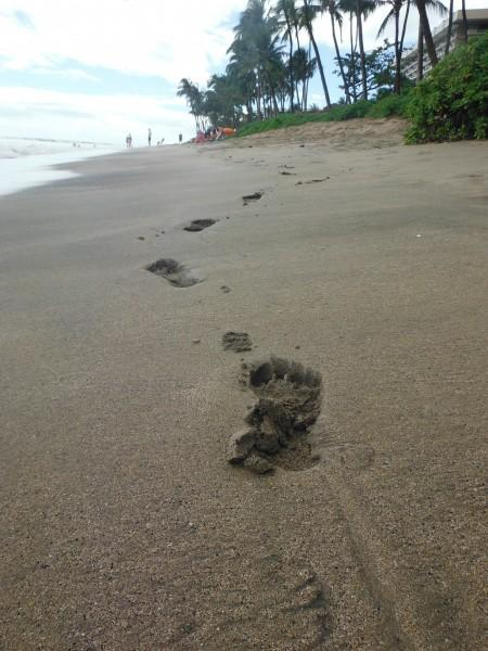025 450x600 Maui: Haleakala Crater and Kaanapali Beach