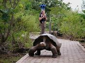 Visit Galapagos Island with Chocolates!