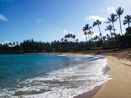 DSCF7654 650x487 Maui: Napili Beach