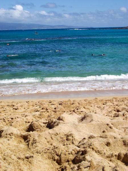 DSCF7685 450x600 Maui: Napili Beach
