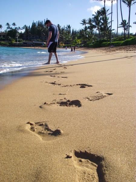 DSCF7660 450x600 Maui: Napili Beach