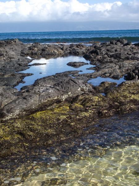 DSCF7672 450x600 Maui: Napili Beach