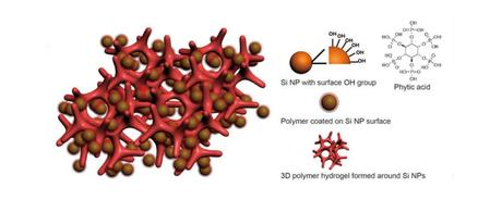 This is an illustration of a new battery electrode made from a composite of hydrogel and silicon nanoparticles (Si NP). Each Si NP is encapsulated in a conductive polymer surface coating and connected to a three-dimensional hydrogel framework. (Credit: Yi Cui, Stanford University)