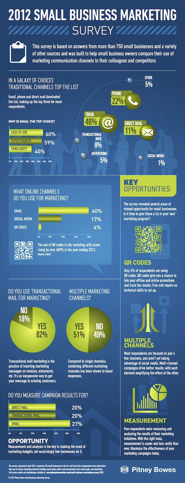 Small Business Marketing Survey Infographic