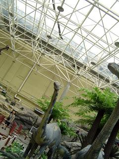 Beijing Museum Review: Beijing Museum of Natural History (北京自然博物館)