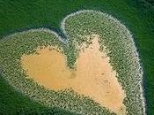 Amazing Aerial Photographs Yann Arthus-Bertrand