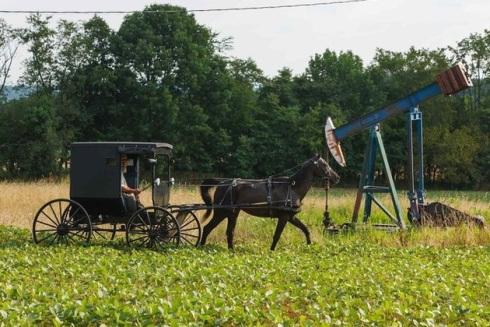 amish thesis