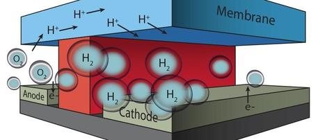 In this microfluidic test-bed, a chemically inert wall (red) separates anode from cathode and the channels in which O2 and H2 are generated by splitting water molecules. Protons (H+) are conducted from one channel to the other via a membrane cap (Nafion®) that also prevents the intermixing of the O2 and H2 product streams. (Credit: See citation at the end of this article)