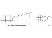 Pentacycloanammoxic Acid