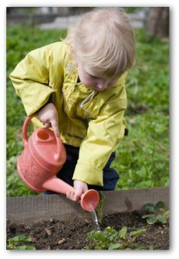 vegetable gardening online.com  The Easiest Family Vegetable Garden