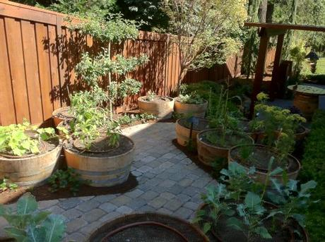 wine barrel vegetable garden street of dreams oregon yes spaces The Easiest Family Vegetable Garden