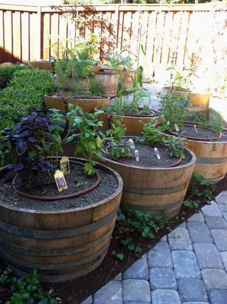 yes spaces raised bed wine barrel vegetable garden The Easiest Family Vegetable Garden