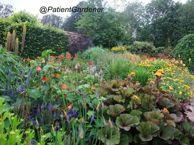 Hot Border at Wollerton