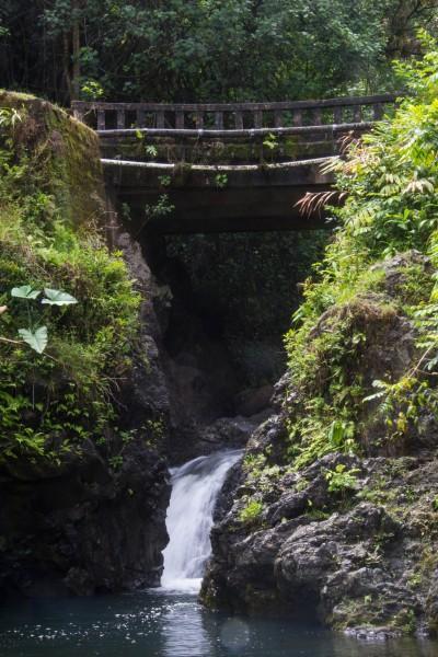 IMG 2848 400x600 Maui: Road to Hana
