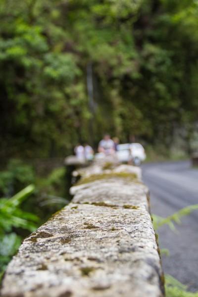 IMG 2860 400x600 Maui: Road to Hana