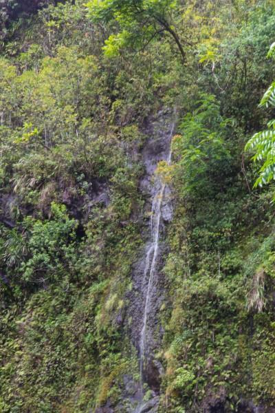IMG 2866 400x600 Maui: Road to Hana
