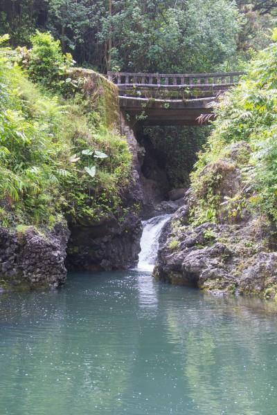 IMG 2845 400x600 Maui: Road to Hana