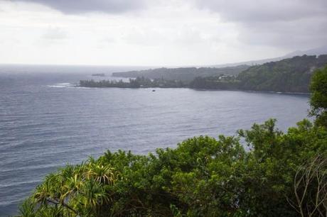IMG 2812 650x433 Maui: Road to Hana