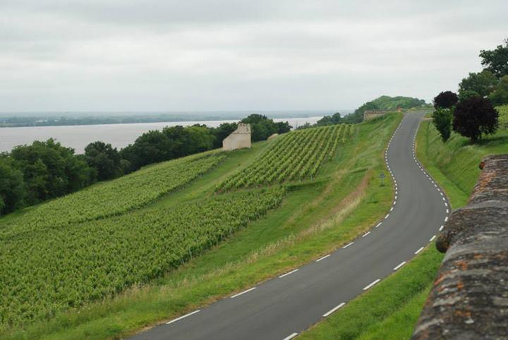 Getting Out of Bordeaux to Explore Wine Country