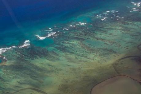 IMG 3046 650x433 Maui: Blue Hawaiian Helicopter Ride