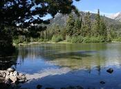 Anniversary Trip Jackson Hole Yellowstone