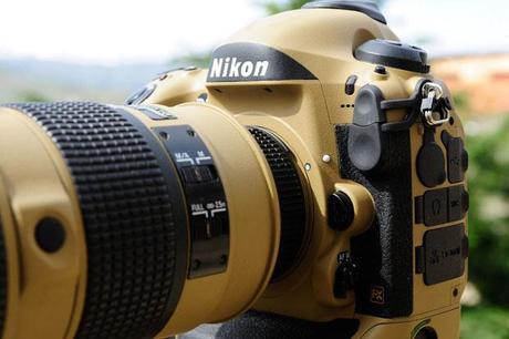 Photographer Gives His Nikon Gear a DIY Desert Mirage Lizard Paint Job 9X98okK