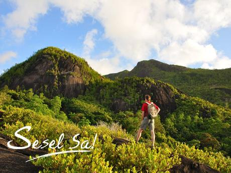 http://www.seychelles.travel/media/products/wallpapers/1024x768_NatureWalks.jpg