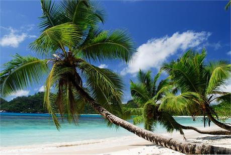 http://www.willgoto.com/images/Size3/Seychelles_mahe_Baie_Lazare_89880b588c8a4d08bcf31c925e86c0ed.jpg