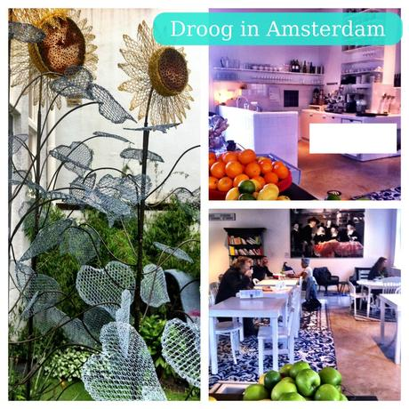 Droog, a funky store/cafe/hotel in Amsterdam