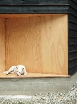 Wood and the Dog by StudioErrante Architetture