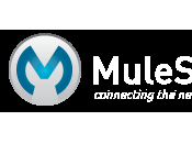Deploy Application Mule Standlone