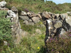 Roundhouse at Kynance Gate prehistoric village (photo: Amanda Scott)