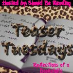 Teaser Tuesday: The Restorer
