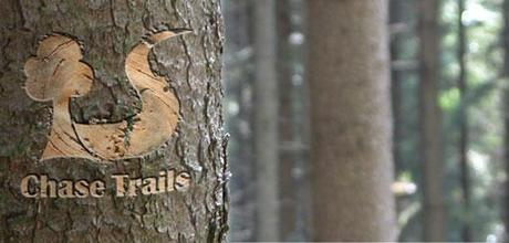Vote for Chase Trails in the Final of the Lottery Awards