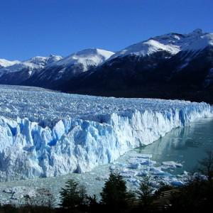 Calafate 300x300 Argentinas top 5 holiday destinations chosen by locals