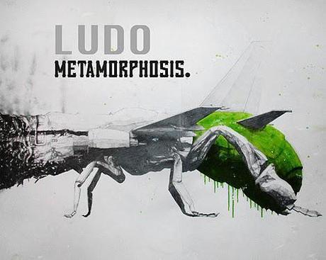 Ludo - Metamorphosis Exhibition