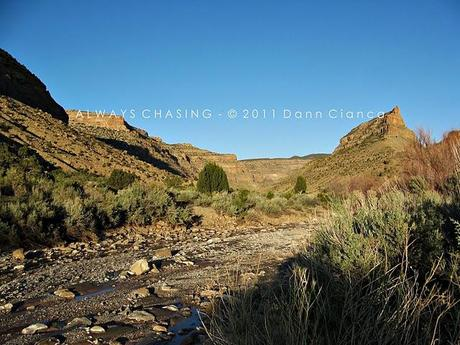 2011 - May 4th - Spring Creek Canyon, Little Book Cliffs Wilderness Study Area / Wild Horse Range