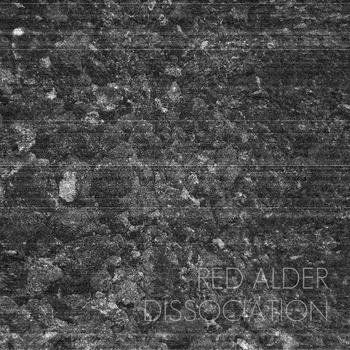 Red Alder – Dissociation