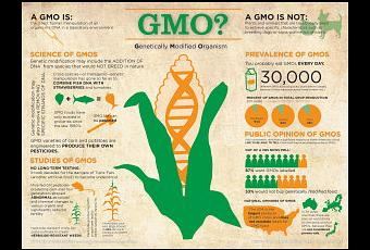 anti gmo ecoterrorism During 2006, the politically incorrect guide to global warming was published which quickly became a best selling book the book's author, christopher horner, gave a speech about his book at a function hosted by the eagle forum in washington dc.