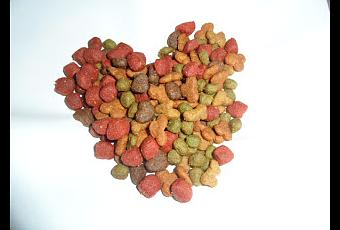 recalls truth about pet food bravo is recalling select lots and