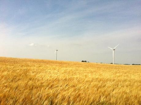 Frequently Asked Questions about Wind Farms