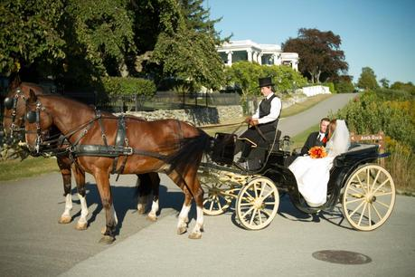 Horse Drawn Carriage Wedding With Horse Drawn Carriage