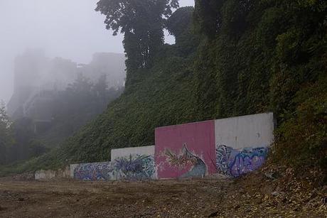 misty morning graffs.jpg