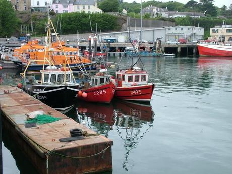fishing boats in dunmore east harbor in county waterford - ireland