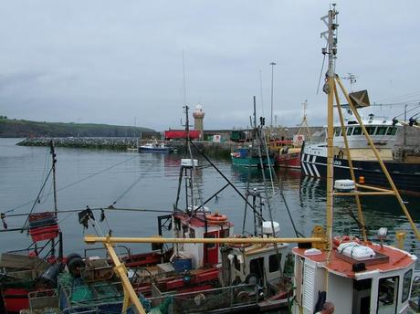 main wharf in harbor at dunmore east - county waterford - ireland