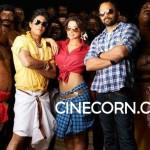 Shahrukh_khan_chennai_express_first_look_photos_1st_look_on_location_leaked_pics_images_stills