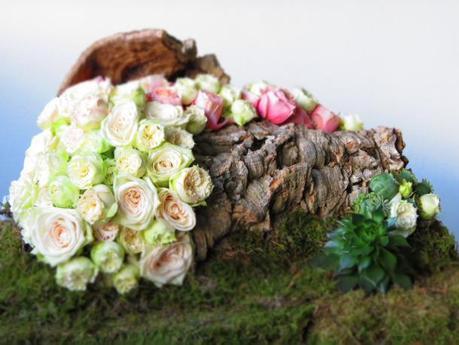 Roses & Bark