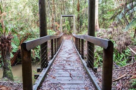 bridge over henderson creek