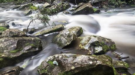 st george river lorne