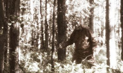 Bigfoot Is Real According To DNA Tests, Genetic Research, And Statistician (Video)